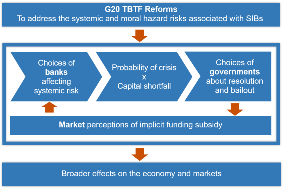 Transmission channels of the TBTF reforms